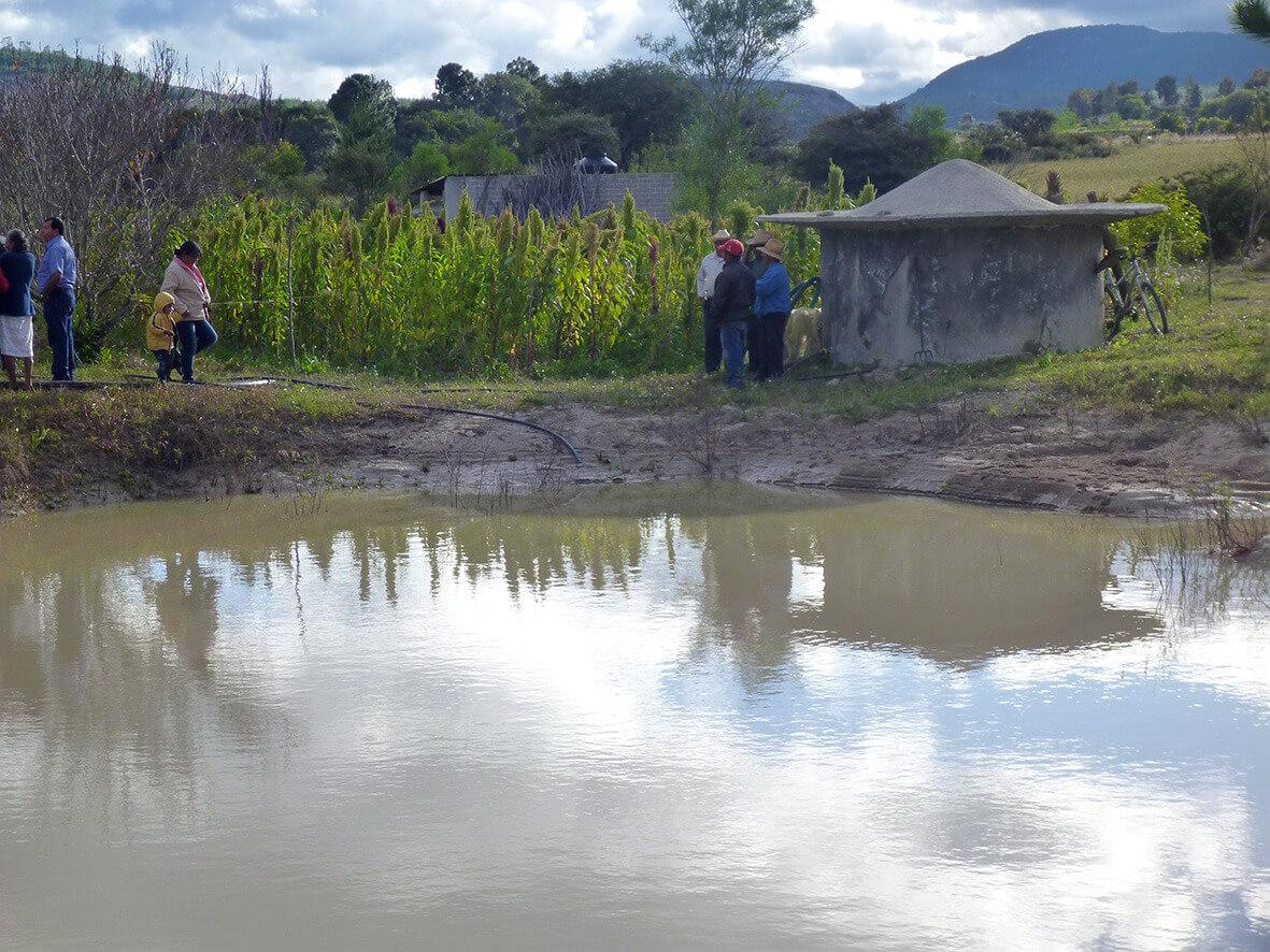 Para el manejo del territorio y del cultivo de amaranto en el círculo virtuoso de la regeneración ecológica, es fundamental recolectar, retener y almacenar agua. Foto: Raúl Hernández Garciadiego